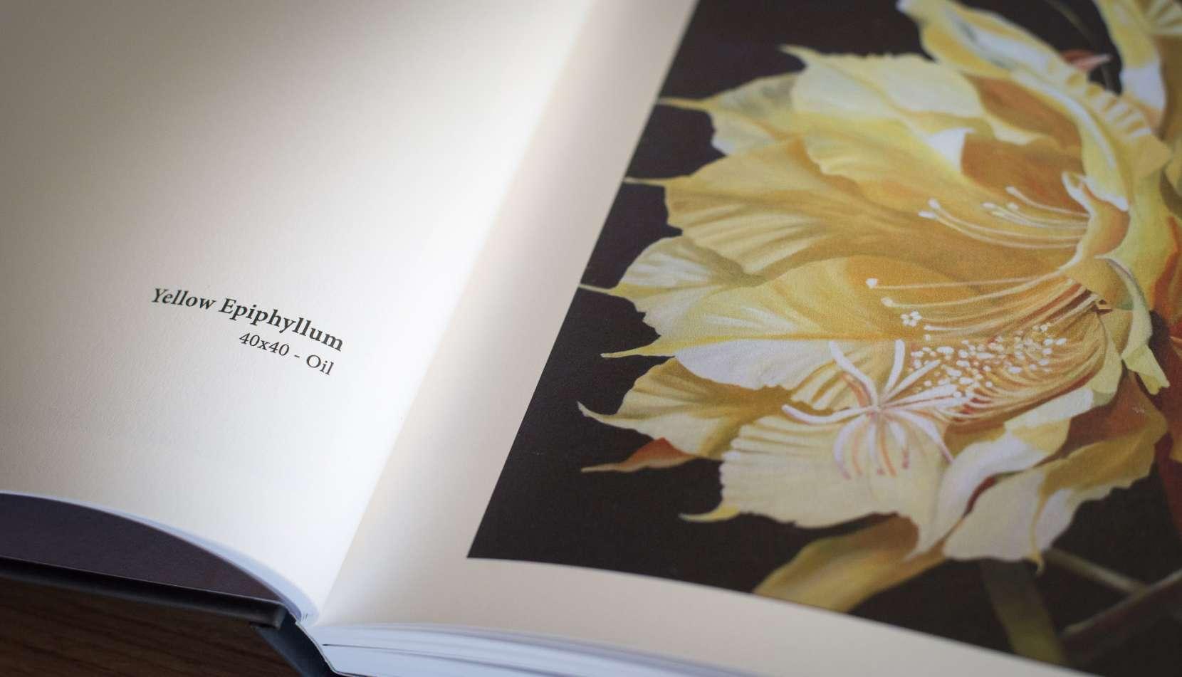 judith-book-6437-1660x951.jpg